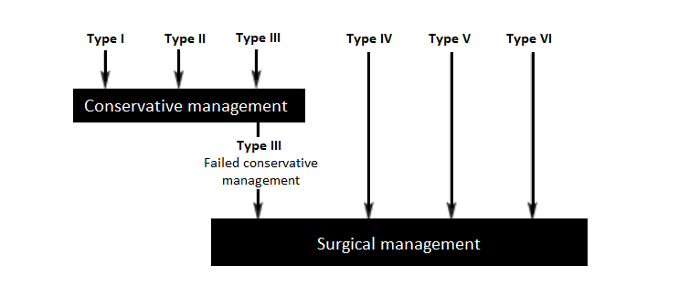 AC joint injury grades and management